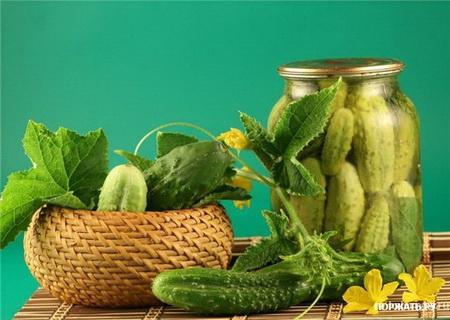 Казалось бы, ну какими лекарственными свойствами может обладать огурец? В нем одна вода - 95%. Но зато в оставшихся 5-6% содержится 2% сахара (глюкоза и фруктоза, крахмал), 15% белка, 0,75% клетчатки, ароматические вещества. Содержание витамина В2 в огурце больше, чем в редисе, В1 больше, чем в свекле, йода больше, чем в других овощных культурах. Замечено, что мелкие плоды содержат больше аскорбиновой кислоты, а с увеличением размера плода содержание ее снижается. Выше всего содержание витамина С в плодах первых и массовых сборов, затем содержание снижается. Еще в огурцах содержатся каротин, хлорофилл, фолиевая, кофейная и другие кислоты.     В огурцах есть калий, фосфор, кальций, магний, натрий, железо, кремний, хлор, алюминий, марганец, никель, медь, цинк, свинец, хром, серебро, титан, кобальт, цирконий и другие вещества. Вот вам и простой бесхитростный огурчик! Диетическим и лечебным свойством обладают 8-12-дневные завязи. Высокое содержание калия ускоряет движение воды в организме. Огурец является сильным мочегонным средством, удаляет отеки, снижает артериальное давление, предупреждает дистрофические и воспалительные процессы в миокарде и оказывает благоприятное действие при нарушениях сердечного ритма. Грунтовые огурцы богаче тепличных.     Огурцы обладают следующими видами действия: антисклеротическое, антитоксическое, болеутоляющее, гипотензивное, жаропонижающее, противоопухолевое, слабительное, спазмолитическое. В народной медицине используется все растение. Сочетание щелочных солей, калия и йода незаменимо при сердечно-сосудистых заболеваниях и болезнях щитовидной железы.     Органические кислоты необходимы при расстройствах пищеварения, секреции желудка и поджелудочной железы, печени, моторной функции кишечника. Лечебный эффект - при пониженной кислотности, старческих спастических и атонических запорах, развитии гнилостных процессов в кишечнике и дисбактериозе. Кремний и сера необходимы для регенерации покровного эпителия желудочно-кишечного тракта, при эр