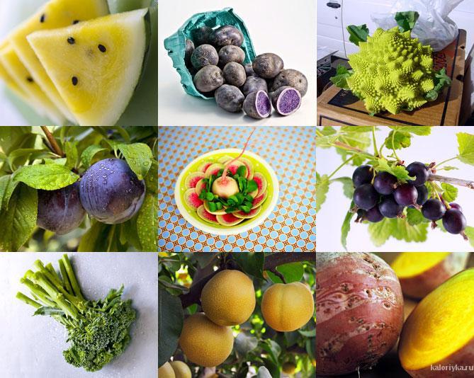 Каждый год в магазинах появляются все новые и новые гибридные фрукты и овощи, хотя еще совсем недавно обычный банан был для российского покупателя настоящей экзотикой. Гибриды (то есть плоды, появившиеся на свет в результате межвидового скрещивания растений, а вовсе не в результате генетических экспериментов) довольно прочно укрепились на полках магазинов, а такие гибридные фрукты, как нектарины и миниолы, и вовсе, как теперь кажется, были всегда.  Однако этими двумя фруктами ассортимент, конечно, не ограничивается. Посмотрим 10 самых любопытных фруктов и овощей, которые появились на свет благодаря селекции.