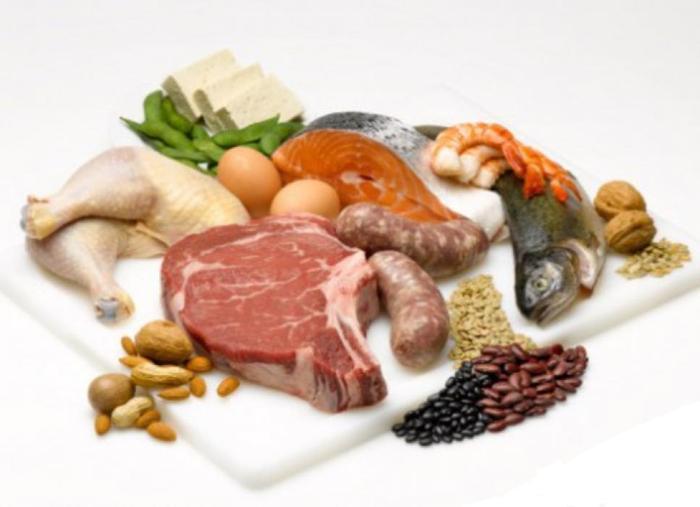 Белки — это высокомолекулярные азотистые соединения, основная и обязательная часть всех организмов. Белковые вещества участвуют во всех жизненно важных процессах. Например, обмен веществ обеспечивается ферментами, по своей природе относящимися к белкам. Белками являются и сократительные структуры, необходимые для выполнения сократительной функции мышц — актомиозин; опорные ткани организма — коллаген костей, хрящей, сухожилий; покровные ткани организма — кожа, ногти, волосы.