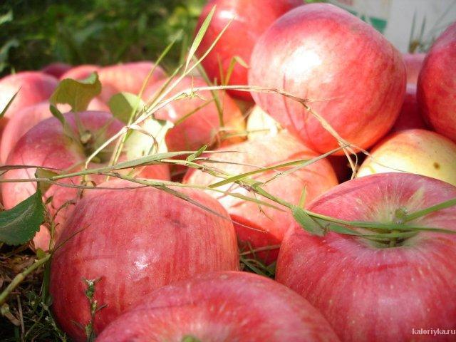 Яблоки - самые привычные фрукты в нашей стране, и очень приятно, что они не только доступны, но и приносят пользу нашему организму.