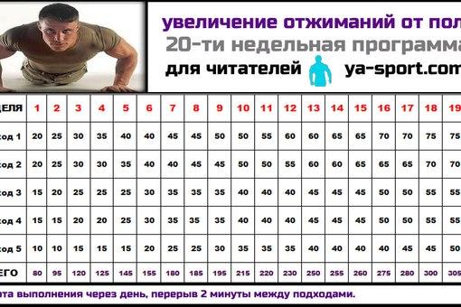 эффективная программа упражнений для похудения
